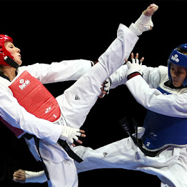 Finale by Peter Frank - Sports & Fitness Boxing ( 08_03_01taekwondo )