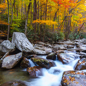 Fall Smokey Mountains by Patrick Flood - Landscapes Forests ( water, national park, photosbyflood, yellows, fall, long exposure, oranges, landscape, chimneys, rocks, smoky mountains )