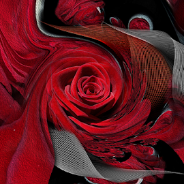 ROSES FOR EVER by Carmen Velcic - Digital Art Abstract ( love, abstract, red, roses, flowers, passion, digital )