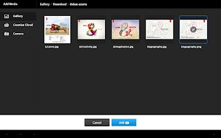 Screenshot of Adobe® Debut