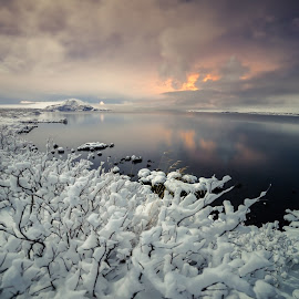 Winter wonderland  by Gunnlaugur Örn Valsson - Landscapes Waterscapes ( thingvellir national park iceland south winter landscape tree snow mountains,  )