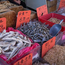 Dried fish by Jack Brittain - Food & Drink Ingredients ( canada, fish, toronto, shrimp, ontario, china town )