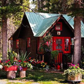 Red Cottage by MiMi Paris - Buildings & Architecture Homes ( charming, glacier, cottage, house, woods, glacier national park )