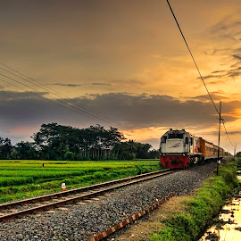 Indonesian Train (3) by Randi Pratama M - Transportation Trains ( train,  )