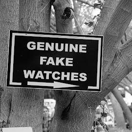 Ok... don't laugh. Truth Well Told, Lies Well Sold :) In Asia, we are probably very accustomed to seeing fake watches, but this ain't Asia. Kusadasi, Turkey. And guess who are standing in line for all these watches :) Hohoho. Merry Xmas :) by Gary Chin - News & Events Entertainment