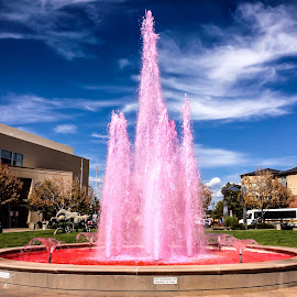 Breast Cancer Awareness Fountain by Joan Powers - Instagram & Mobile iPhone