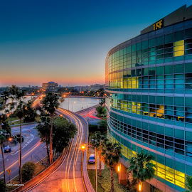 The USF Building by Bill Camarota - Buildings & Architecture Office Buildings & Hotels ( office, building, long exposure, trails, dusk )
