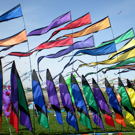 National Kite Festival by Dee Cowan Arndt - News & Events US Events ( cherry blossom festival,  )