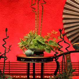 Tea time at the fair. by Joel Ortiz - Artistic Objects Furniture ( interior, red, plants, beauty, tea )