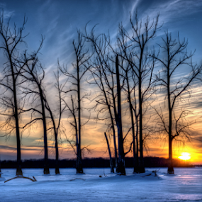 by Blaine Stauffer - Landscapes Sunsets & Sunrises ( clouds, winter, silhouette, ice, sunset, snow, trees,  )