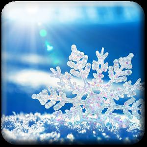 Снег Живые Обои