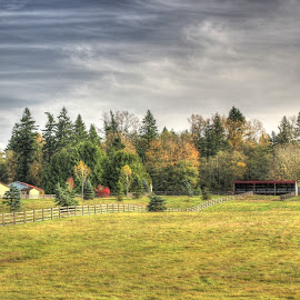 Horses will graze by Ernie Kasper - Landscapes Prairies, Meadows & Fields ( fence, ranch, houses, horses, canada, farmland, stable, british columbia )