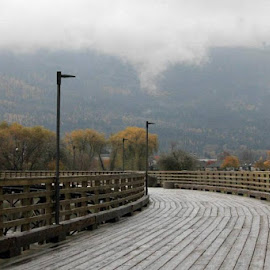 At the Wharf by Lena Arkell - City,  Street & Park  City Parks ( park, autumn, fall, wharf, misty )