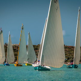 Exuma Regatta - 7612 by John Covin - Transportation Boats ( exuma, sailboat racing, regatta, bahamas,  )