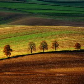 after harvest.../ po žních.... by Irena Brozova - Landscapes Prairies, Meadows & Fields
