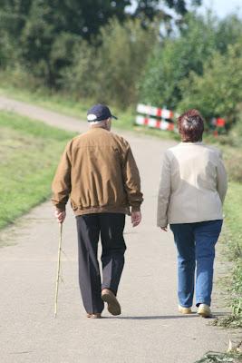 Wandelingen en wandeltochten in Twente