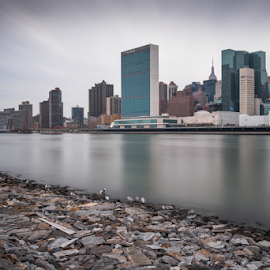 East Side Manhattan Skyline by Richard Cavalleri - City,  Street & Park  Skylines ( november, skyline, building, reflection, manhattan, nyc, ny, un, chrysler, cold, towers, side, east, united nations, daylight, river )
