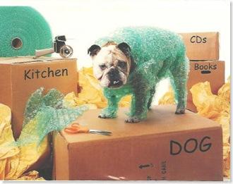 Wrap Dog