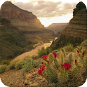 Grand Canyon Wallpapers icon