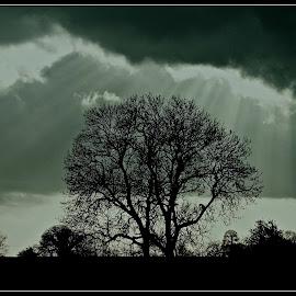 light by David Walker - Landscapes Cloud Formations