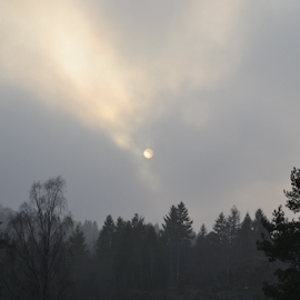 The sun try by Veronica S. Kooistra - Landscapes Weather