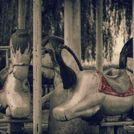 Carousel by Shelly McAllister - Artistic Objects Antiques ( selective color, pwc )