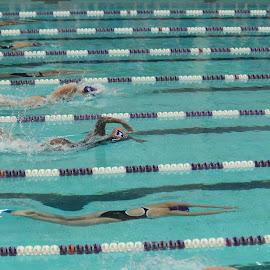 swim and dive by Jon Radtke - Sports & Fitness Swimming ( swim and dive )