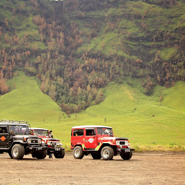 The Jeeps by Ludi Sasmita - Transportation Automobiles ( pasuruan, malang, mountains, nature, jatim, probolinggo, transportation, places, landscape, bromo )