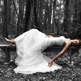 Forest Bride by Niki Ashcroft - Wedding Bride ( pose, bench, black and white, wedding, forest, bride )