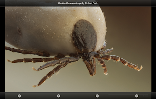 Screenshot of smart Microscope Lite
