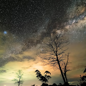 Dragon of the night by Christianto Mogolid - Landscapes Starscapes ( milkyway, bimasakti, night view, high iso, photography )