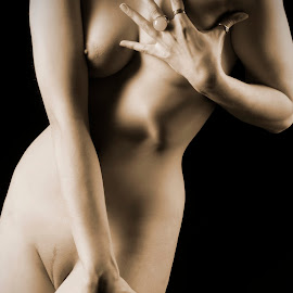 Body Sculpting, The Art by Neil Tailor-Photography - Nudes & Boudoir Artistic Nude ( sepia, art nude, nude, body art, shadows )