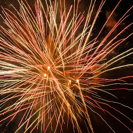 Fireworks by Cory Bohnenkamp - Abstract Fire & Fireworks ( abstract, canada day, fireworks, flower, fire )