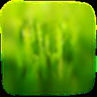 Crickets icon