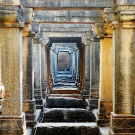 Step Well by Mohammad Saifi - Buildings & Architecture Public & Historical ( sevasi vaav )