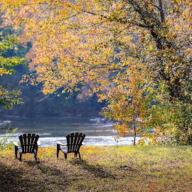 Down by the Riverside by Donna Vasquez - Landscapes Forests ( autumn, relax, chairs, colors, fall, trees, addirondack, river,  )