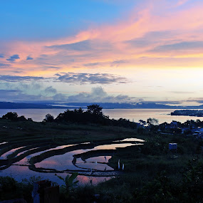 Morning Toba by Daniel Pasaribu - Landscapes Sunsets & Sunrises ( balige, tobasa, danau toba, sawah, toba )