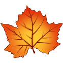 Autumn Leaves - Live Wallpaper icon