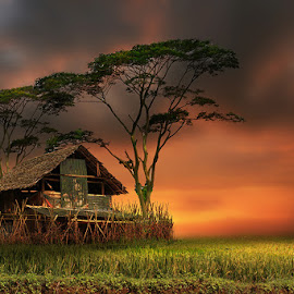 by iD . - Landscapes Prairies, Meadows & Fields