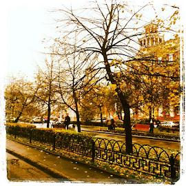 День 20. Сезон. by Vadim Malinovskiy - Instagram & Mobile iPhone ( gratitudephotochallenge )