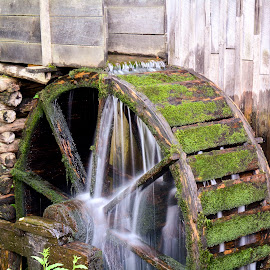 Water wheel by Joe Hollars - Buildings & Architecture Other Exteriors ( flowing water, water wheel, non working )