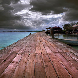 Jalanku by Nami Iman - Landscapes Travel ( path, nature, landscape )