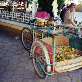 Pedaling Produce to Market by Marcia Geier - Transportation Bicycles (  )