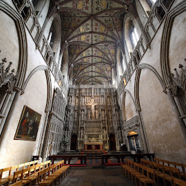 St Albans Cathedral  by Almas Bavcic - Buildings & Architecture Places of Worship