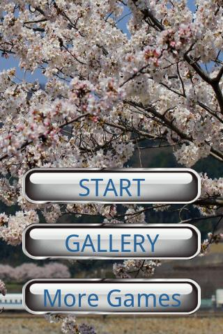 기차 퍼즐: 기관차와 벚꽃
