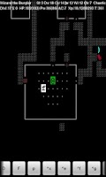 Screenshot of NetHack