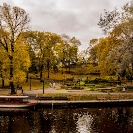 by Kristine Dokane - City,  Street & Park  City Parks