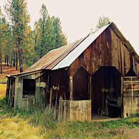Russel Valley Homestead by Samantha Linn - Buildings & Architecture Decaying & Abandoned (  )