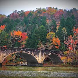 Cumberland State Park, Cumberland River Bridge by Paul Mays - City,  Street & Park  Vistas