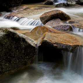 by Siniša Almaši - Nature Up Close Rock & Stone ( water, up close, stream, nature, cascade, white, stone, rock, forest, river )